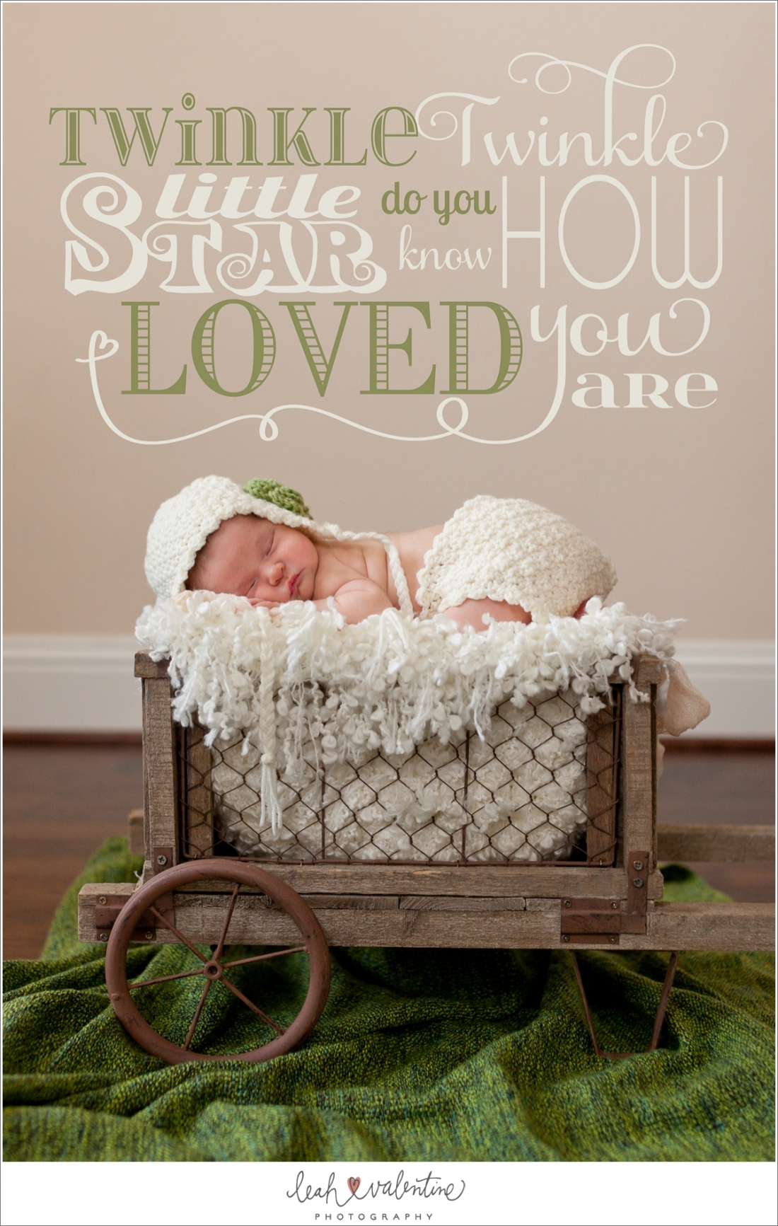 Newborn girl portrait in wheel barrel with bonnet and diaper cover by Leah Valentine Photography