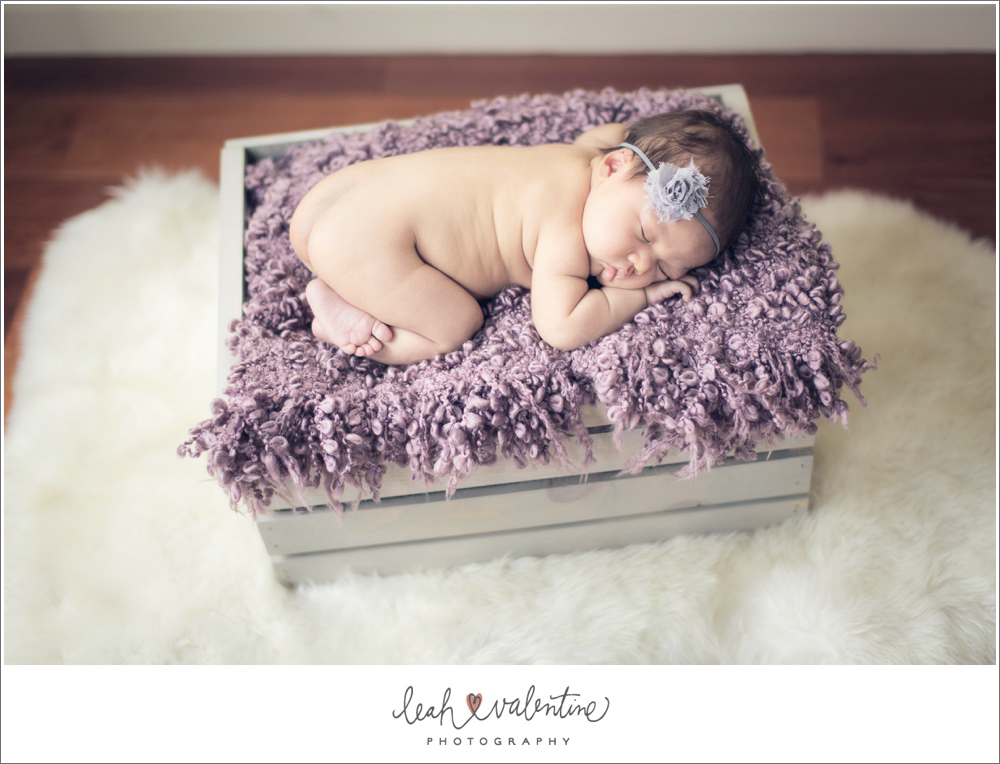 Newborn portraits with a gray crate and lavender blanket