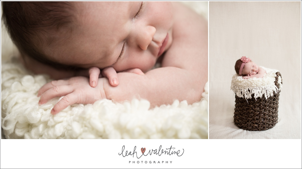 santa barbara newborn portraits in a brown basket with white blanket