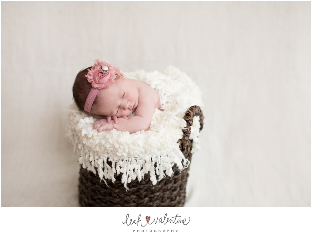 santa barbara newborn portraits in a brown basket with white blanket and pink headband