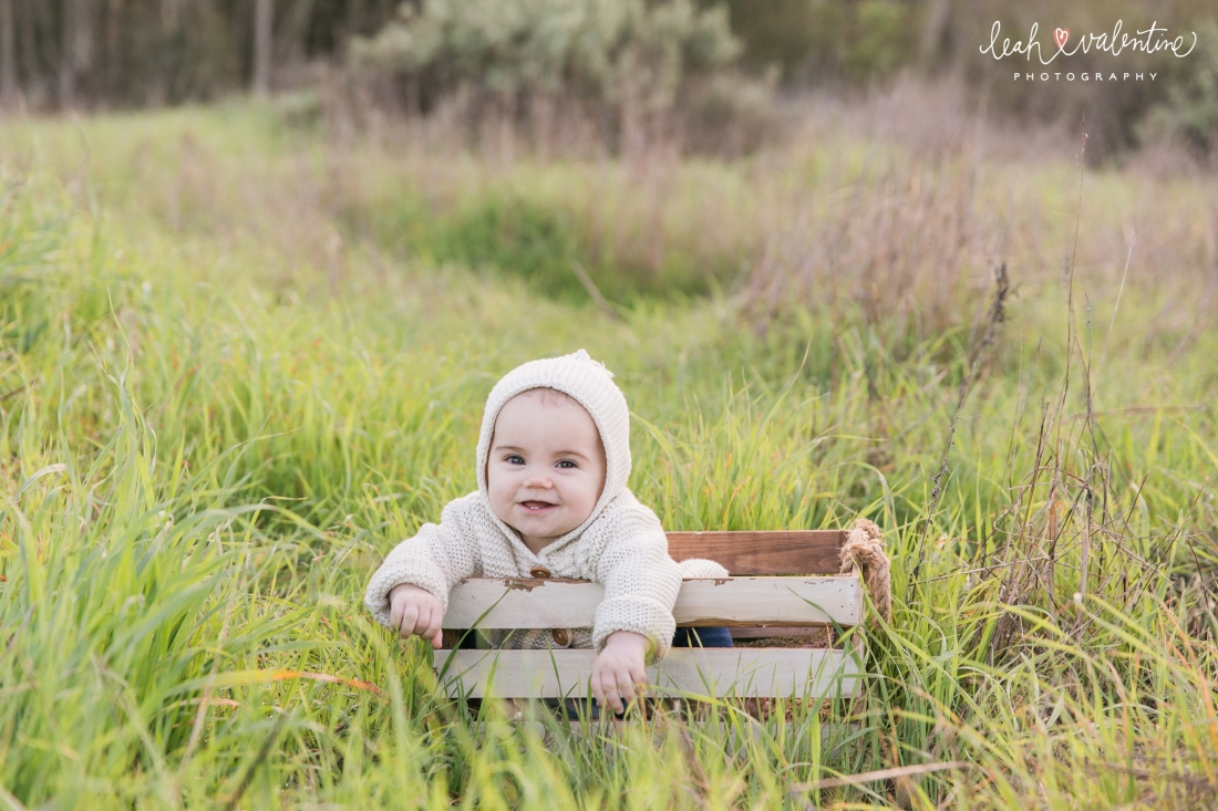 family portraits with six month baby the witt family